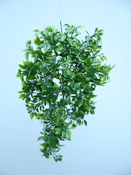 3+X+Artificial+Trailing+Green+Thymus+Plants+for+Hanging+Baskets+%26+Pots%2D+made+from+the+same+tough+and+long+lasting+material+as+the+popular+boxwood+topiary+balls+and+UV+treated+for+outdoor+or+indoor+use%2E+PERFECT+FOR+YEAR+ROUND+COLOUR+IN+YOUR+GARDEN%21