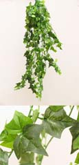 3xArtificial Silk Small Leaf Ivy Trailing Plants (Rich Dark Green Leaf) 70 CM Length & with 400+ Assorted Sized Ivy Leaves